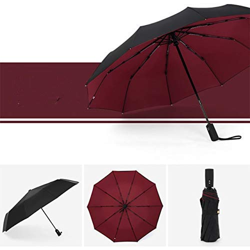 Paraguas plegable automático a prueba de viento doble femenino masculino diez hueso coche lujo grandes negocios paraguas hombres lluvia mujeres regalo paraguas - Redwine, a1