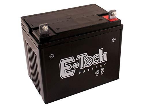 Batterie 12V 22Ah (+ Pol Rechts) passend Snapper LT200 Rasentraktor