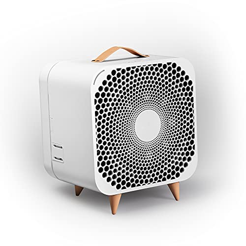 Blueair Pure Fan Auto, 3-Speed + Auto mode, HEPASilent Purifying Room Fan, Cools + Cleans, Removes...
