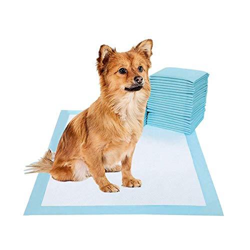 Gadget Zone UK® Pet Training en Puppy Pads Pee Pads voor Honden - Super Absorbent & Lekvrij in verschillende verpakkingsmaten!, 50 Pads