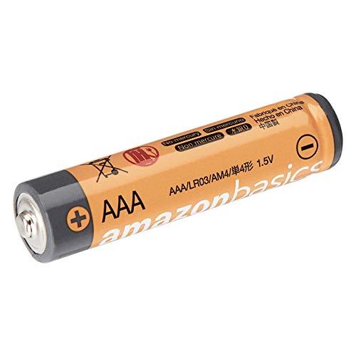 Grundig City 31 Tragbares Radio (UKW-/MW-Tuner) Chrome & Amazon Basics Performance Batterien Alkali, AAA, 36 Stück (Design kann von Darstellung abweichen)