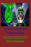 LUIGI'S MANSION USER GUIDE: A User Guide To Mastering Your Luigi's Mansion Game And Becoming A Pro