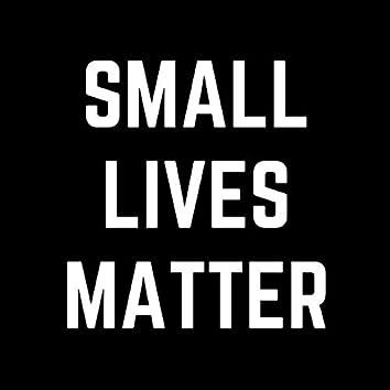 Small Lives Matter