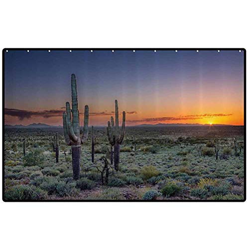 RenteriaDecor Saguaro Cactus Decor Collection Outdoor Rugs Sunset Over The Phoenix Valley in Arizona Seen from Silly Mountain State Park Image Indoor or Outdoor Rugs for Door Mats