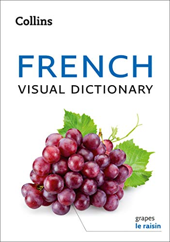 59 Best French Dictionary Books Of All Time Bookauthority