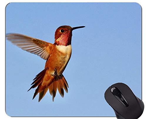 Yanteng El cojín de ratón CREA para requisitos particulares, cojín de ratón con alas del Juego del colibrí