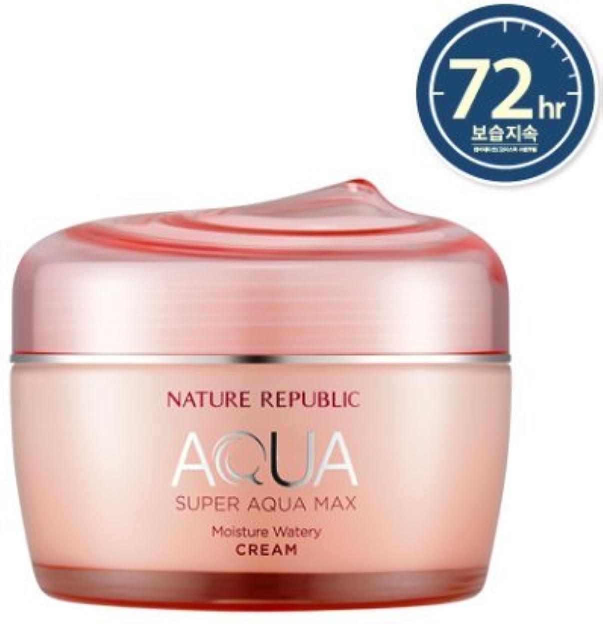 お肺永遠の[NATURE REPUBLIC] スーパーアクアマックスモイスチャー水分クリーム / Super Aqua Max Moisture Watery Cream 80ml (乾燥肌用) [並行輸入品]