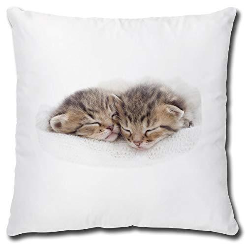 TRIOSK Kissen mit Katzenmotiv lustig Nap Time Katzen Dekokissen Geschenk für Katzenliebhaber Frauen Mädchen Kinder Zierkissen Füllung 40x40 Weiß Beige