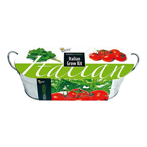 Anzuchtset Italiano in Zinkwanne - Tomate und Basilikum