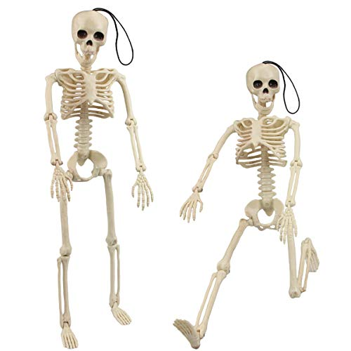 16'' Posable Halloween Skeleton, Aitbay Halloween Decorations Full Body Skeletons Props for Halloween Party Graveyard Haunted House Decoration 2 Pack