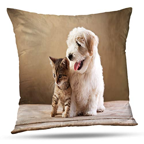 Tyfuty 16 x 16 Inch Throw Pillow Covers Best Friends Kitten and Small Dog Space Cat Pet Puppy Animal Cute Pillowcases Cushion Use for Living Room Bed Sofa