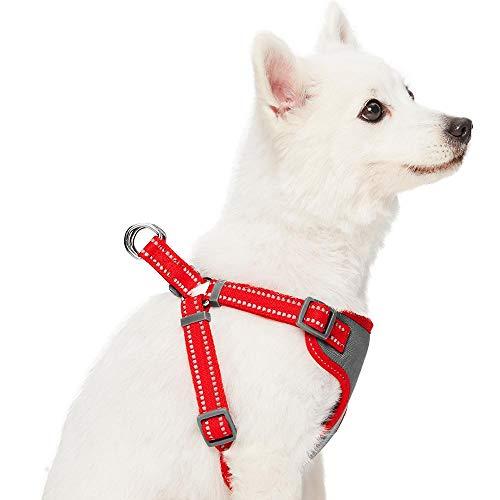 Umi. Essential Pastel - Arnés Tipo Chaleco para Perros Reflectante M, Contorno del Pecho 56-66 cm, arneses Ajustables para Perros (Rojo Amapola)