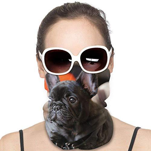 French Bulldog Neck Gaiter Balaclava Warm Scarf Windproof Mask Dust - UV Free Motorcycle Face Mask for Women Men