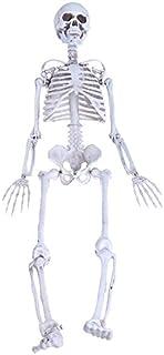 be6ed1252c7 Kofun Tricky Gag juguete Relax juguete humanos calavera esqueleto tama?o  mediano calavera de cuerpo