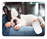 Timing&weng French Bulldog Puppy Sleeping on Knees Mouse pad Gaming Mouse pad Mousepad Nonslip Rubber Backing