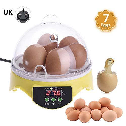 selfdepen Mini incubadora doméstica de Huevos Incubadora Ajustable Temperatura Incubadora automática Incubadora de Huevos de Aves de Corral pequeña Caja de cría