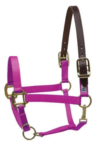 Perri's Premium Nylon Sicherheitshalfter, 150, Himbeere, Pferd