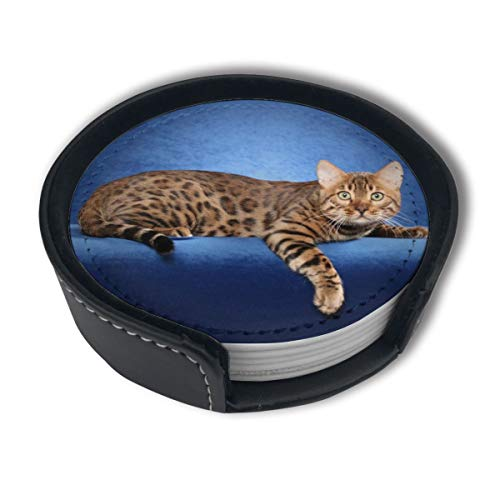 HBLSHISHUAIGE Beautiful Bengal Cat Coasters with Holder Set,Round Mugs and Cups Mat Pad for Drinks,Suitable for Home and Kitchen(6PCS)