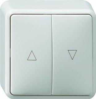 Jung as500 Tecla para interruptor pulsador persiana placa central blanco