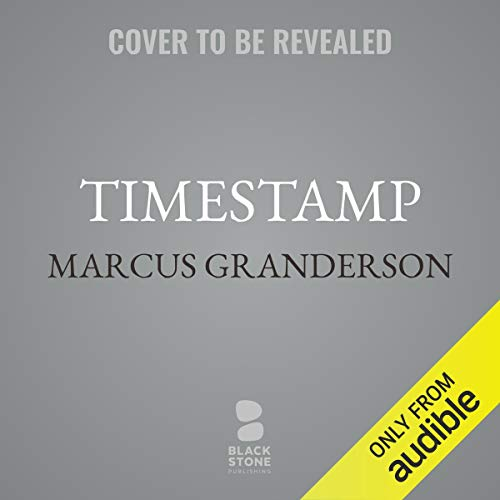 Timestamp audiobook cover art