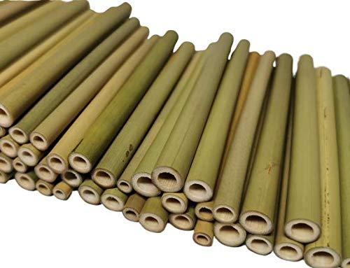 aktiongruen Bambusröhrchen Wildb...