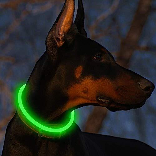 Fttouuy LED Leuchthalsband Hunde Halsband USB wiederaufladbar - Längenverstellbarer Haustier Sicherheit Kragen für Hunde und Katzen - 3 Modus (Grün)