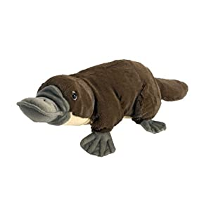 Wild Republic Platypus Plush, Stuffed Animal, Plush Toy, Kids Gifts, Cuddlekins, 12 Inches - 41MXMkzGodL - Wild Republic Platypus Plush, Stuffed Animal, Plush Toy, Kids Gifts, Cuddlekins, 12 Inches