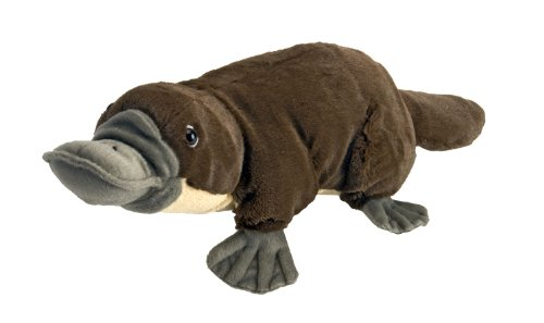 Wild Republic Platypus Plush, Stuffed Animal, Plush Toy, Gifts for Kids, Cuddlekins 12 inches