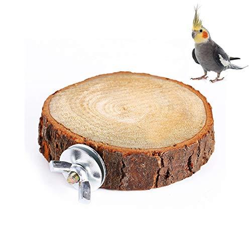 Vogel Barsch Stehen Plattform Spielzeug Runde Papagei Holzständer Vögel Barsch Plattform Papagei Spielplatz Käfigzubehör für Papagei Wellensittich Nymphensittich