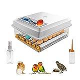 Incubatrice di uova Kacsoo 16 uova Mini incubatrice automatica digitale con Turner per la schiusa di uova di gallina di uova di gallina di quaglia d'oca di Turchia