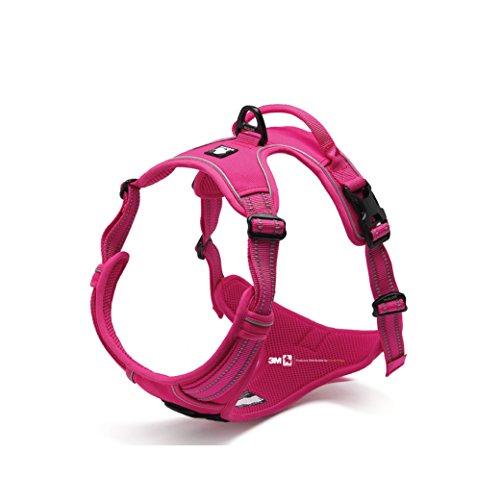 Front Range NEU 2016True Love Design Hundegeschirr, verhindert Zerren. 3m Reflektierende Nähte für bessere Nächtliche Sichtbarkeit