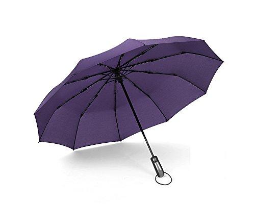 LYYUMBRELLAS ZHDC® Parapluies automatiques, Fold Reinforcement Coupe-Vent Large Double Parapluie Parasol (Couleur : Violet)