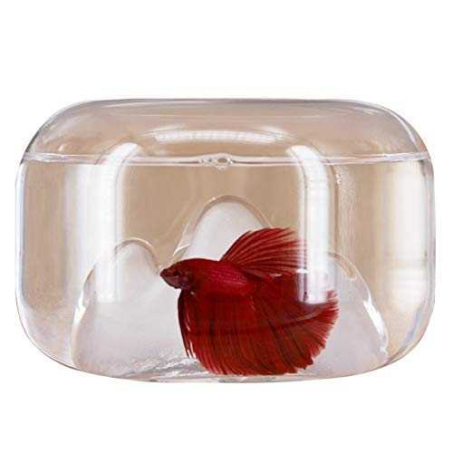 Liefde lamp Sneeuw Berg Glas Betta Aquarium Bureau Kleine Desktop Hydroponische Vaas Cilinder Creatieve Goudvis Kleine Aquarium