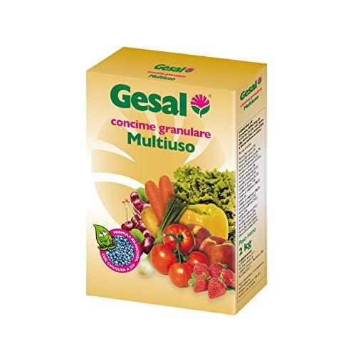 GESAL Concime Granulare Multiuso, Per Piante da Orto, da Frutto e da Giardino, Per Raccolti abbondanti e di qualità, 2 kg