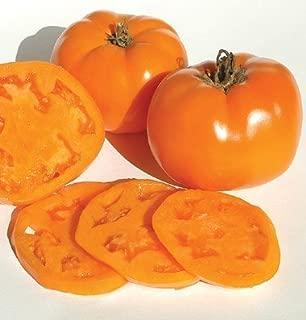 David's Garden Seeds Tomato Beefsteak Valencia 1749 (Orange) 50 Non-GMO, Organic, Heirloom Seeds
