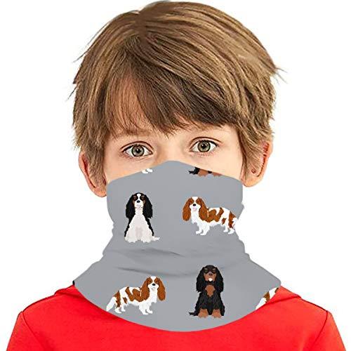 PGTry - Pañuelo multiusos para niños y niñas, protección UV, para cuello, pasamontañas, para verano, ciclismo, senderismo, deportes, al aire libre, Cavalier King Charles Spaniel mixto Abrigos de perro gris