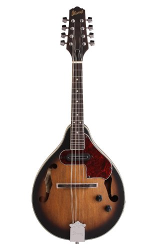 Ibanez M510E Acoustic-Electric Mandolin (Open Pore Vintage Sunburst)