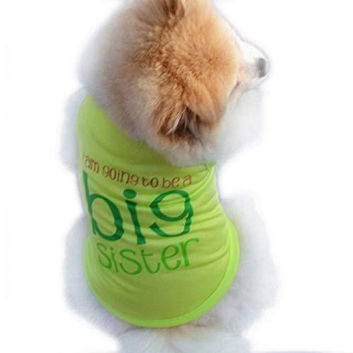 Kostuum - geschreven - ik word een grote - ik sta op het punt een oudere zus te worden - groene kleur - hond - l i'm going to be a big sister