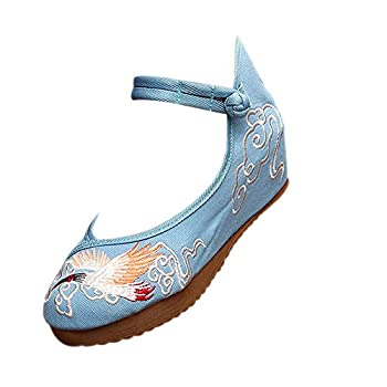 XFentech Dance Shoes - Chinese Traditions Embroidered Shoes Performance Shoes Blue