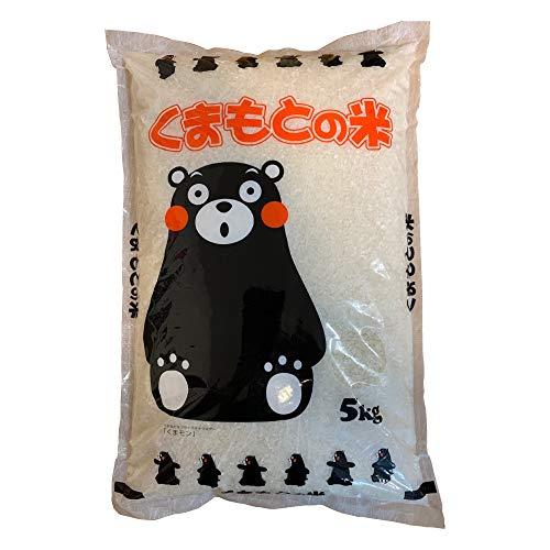 新米 熊本のおいしいお米 ひのひかり 5kg 5キロ 令和元年 熊本県産100%