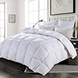 HOMBYS Luxury Real California King Goose Down Comforter 108'x98' King/Cal King Duvet Insert Ultra Soft 100% Cotton Down Proof Cover Feather and Down Comforter Hypoallergenic with 8 Corner Tabs