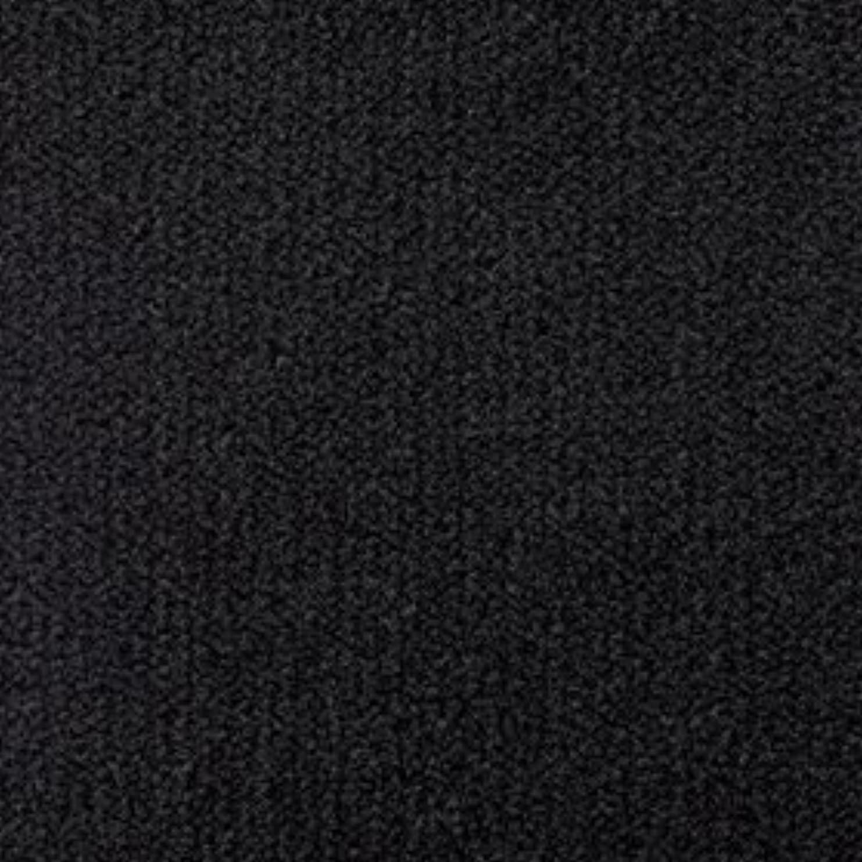 吸う傾向がある無し東リ ニューレモードII LD4618 中京間12畳 (364×546cm)