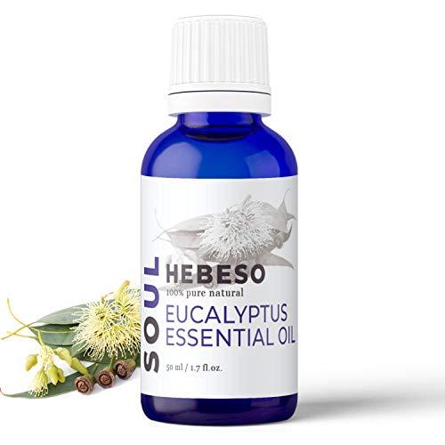 PlantSoul huiles essentielles (Eucalyptus, 50ml)