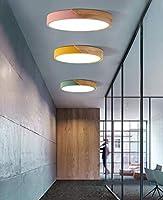 HLL 装飾的なシャンデリア、シーリングランプ、30Cmの北欧モダン・ミニマルログインLedシーリングライト、研究ライト、ラウンドリビングルームベッドルーム子供ライトピンクホワイトライト,緑,暖かい光