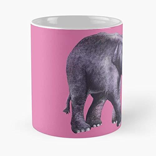 Desconocido Pink Baby Cute Gray Drawing Purple Elephant Grey Taza de café con Leche 11 oz