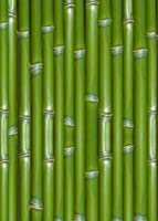 3world 背景布 写真撮影 アニメ 映画 仮装 宅コス 自撮り バック SW1654 和柄 竹林