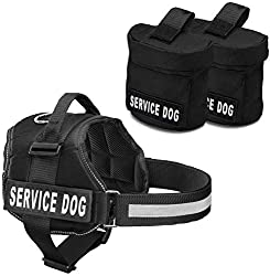 10 Best Saddle Bags With Service Dogs