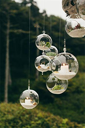 EssenceLiving - Porta candela da appendere, in vetro, motivo: terrario