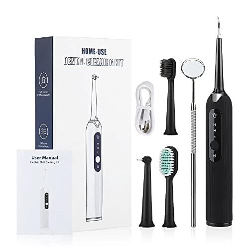 Limpieza Dental, Cepillos de Dientes Electricos Limpieza Dental Ultrasonidos Kits de Cuidado Dental con 3 Modos/4 Cabezal de Cepillo Reemplazable/Espejo Dental/IPX6 Impermeable