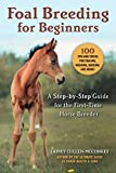Foal Breeding for Beginners: A Step-By-Step Guide for the First-Time Horse Breeder
